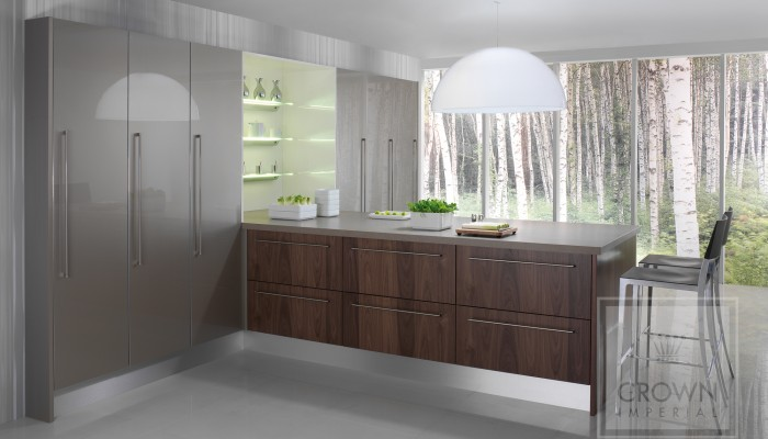 Interior image of kitchen using modern walnut wood with titanium accents
