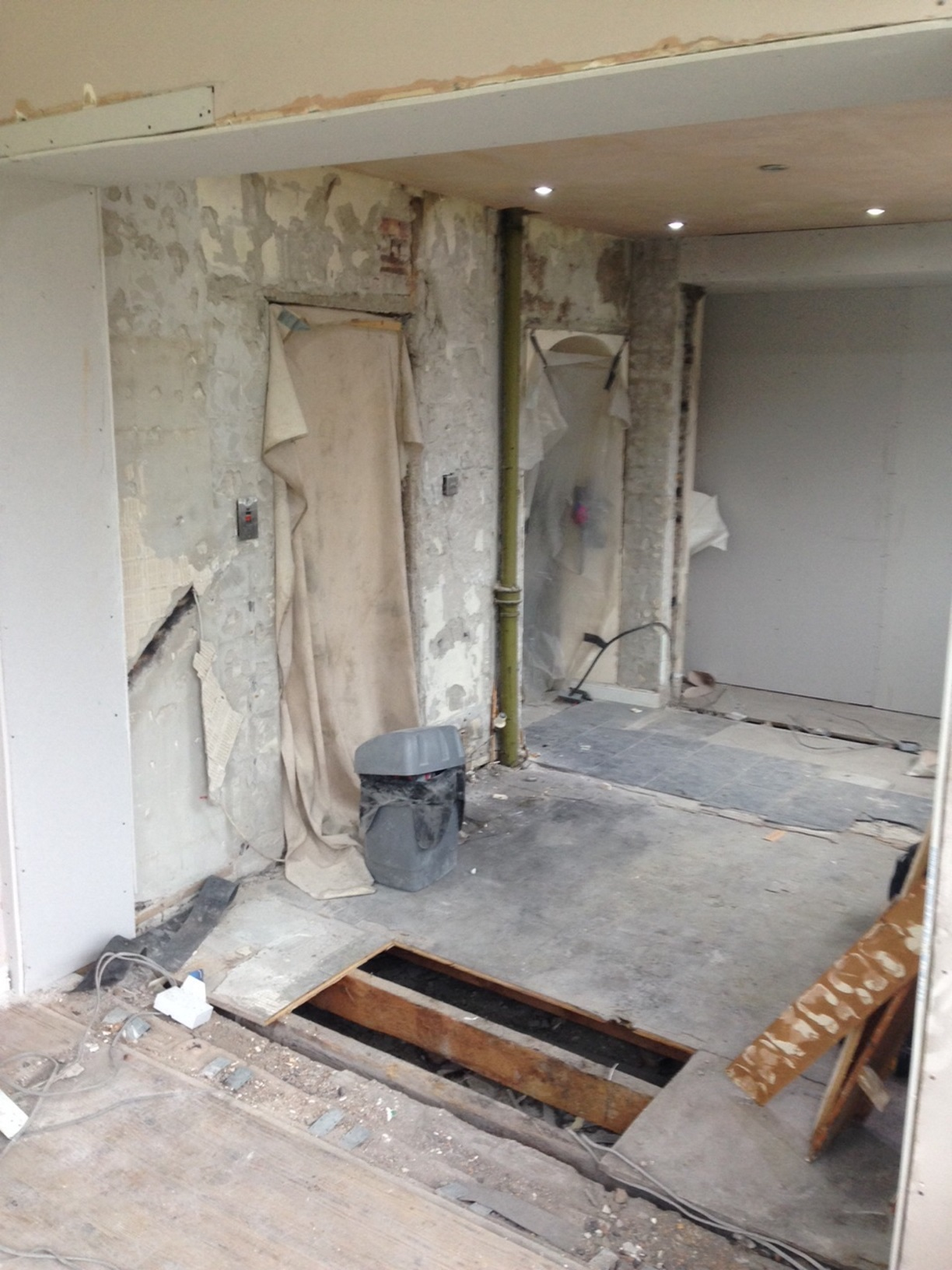 Strip kitchen and knock down walls